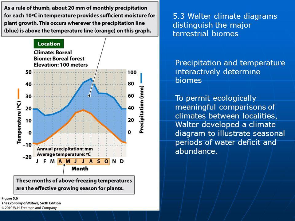 5.3 Walter climate diagrams distinguish the major terrestrial biomes