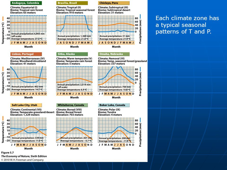 Each climate zone has a typical seasonal patterns of T and P.