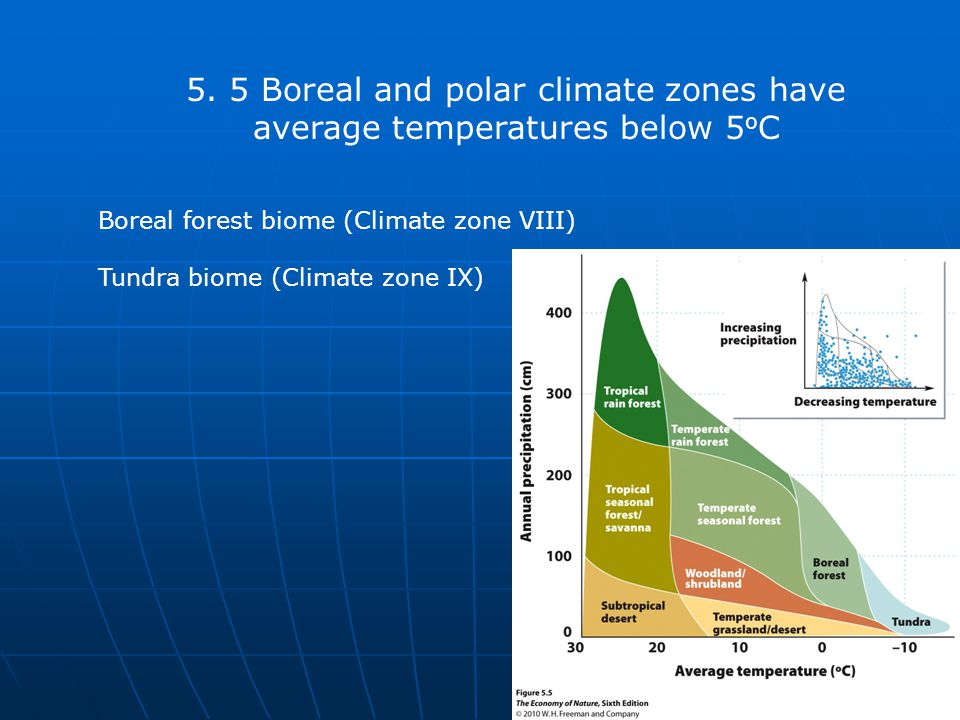 4/11/2017 5. 5 Boreal and polar climate zones have average temperatures below 5oC. Boreal forest biome (Climate zone VIII)