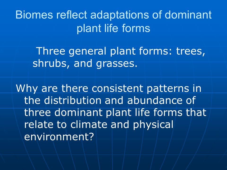 Biomes reflect adaptations of dominant plant life forms