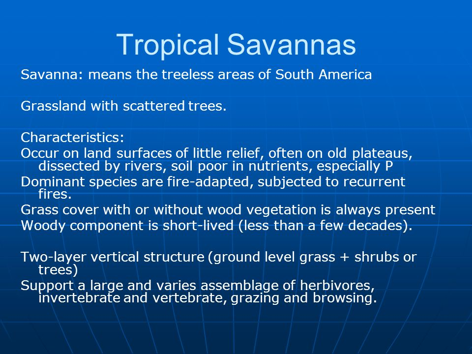 Tropical Savannas Savanna: means the treeless areas of South America