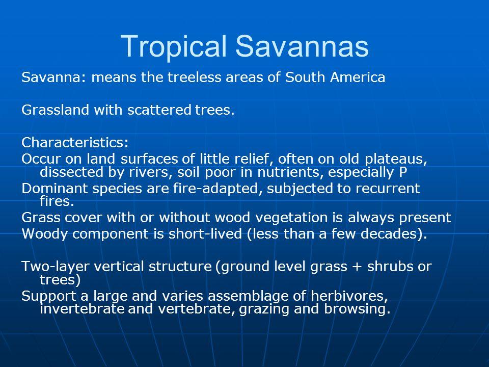 Tropical Savannas Savanna: means the treeless areas of South America
