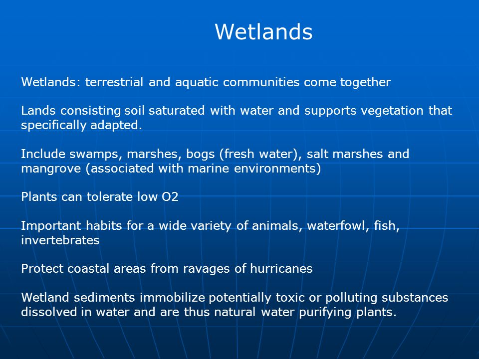 Wetlands Wetlands: terrestrial and aquatic communities come together