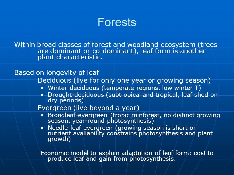 Forests Within broad classes of forest and woodland ecosystem (trees are dominant or co-dominant), leaf form is another plant characteristic.