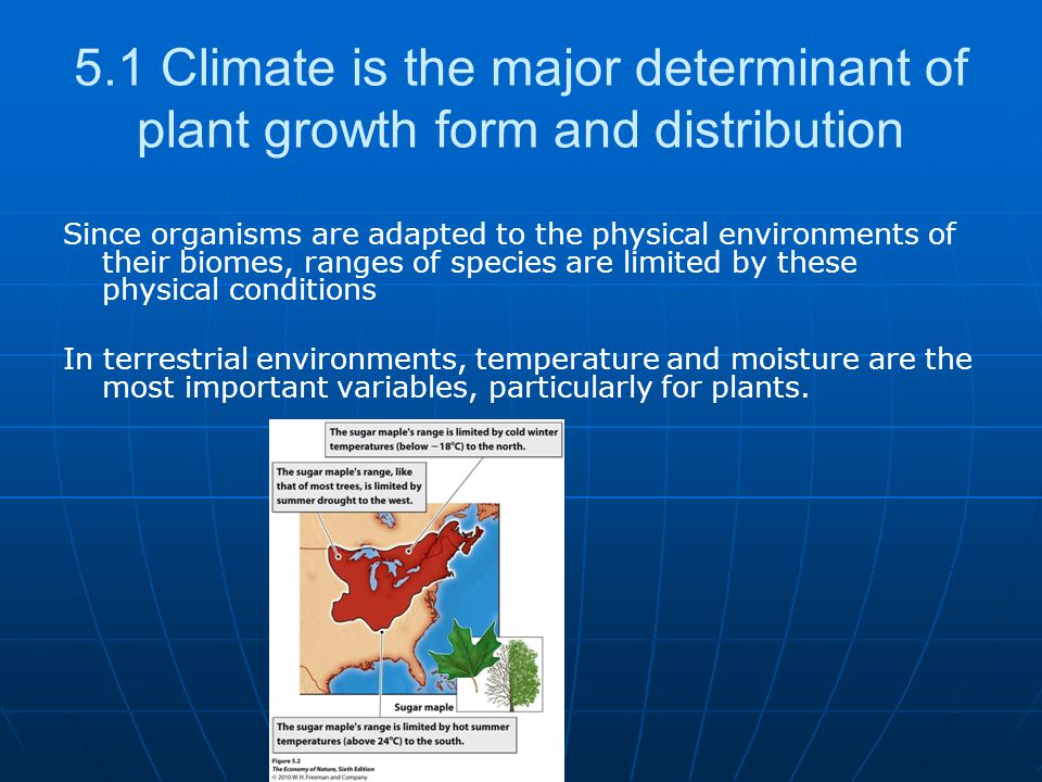 5.1 Climate is the major determinant of plant growth form and distribution