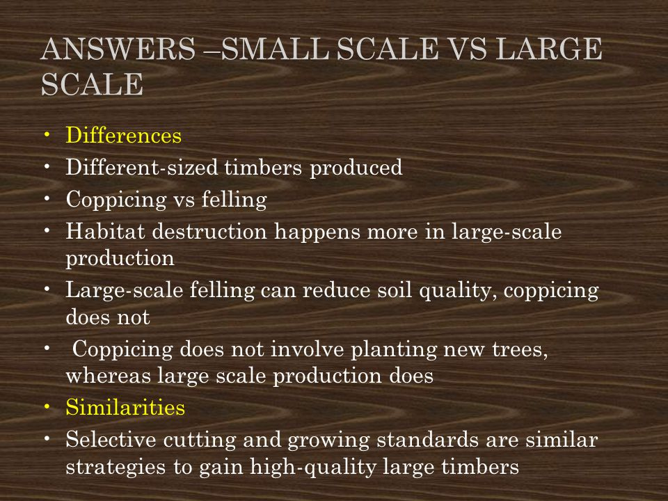 Answers –Small Scale vs Large ScALe