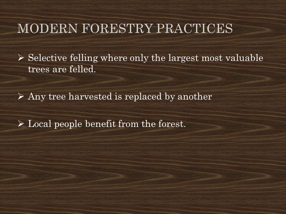 Modern forestry practices
