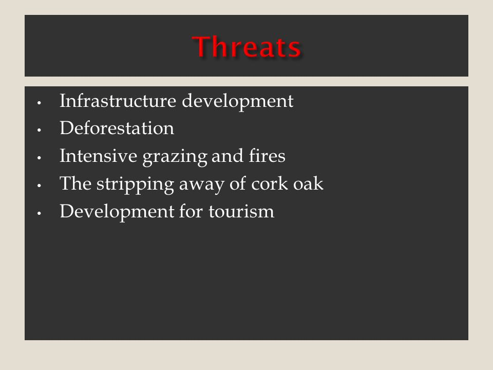 Threats Infrastructure development Deforestation