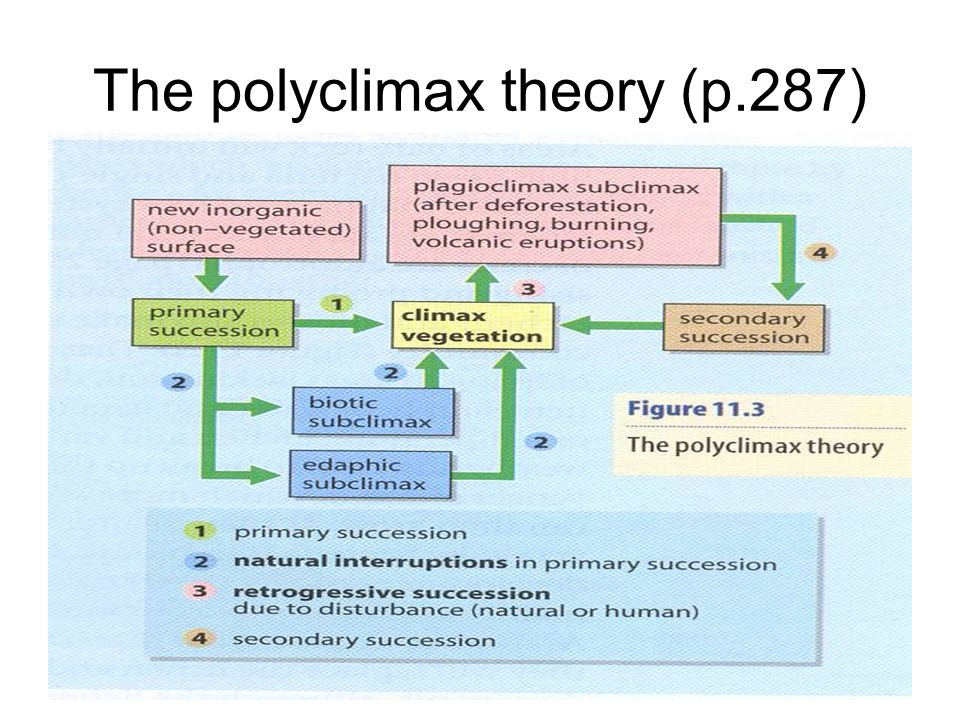 The polyclimax theory (p.287)