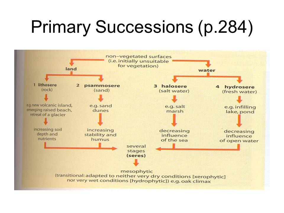 Primary Successions (p.284)