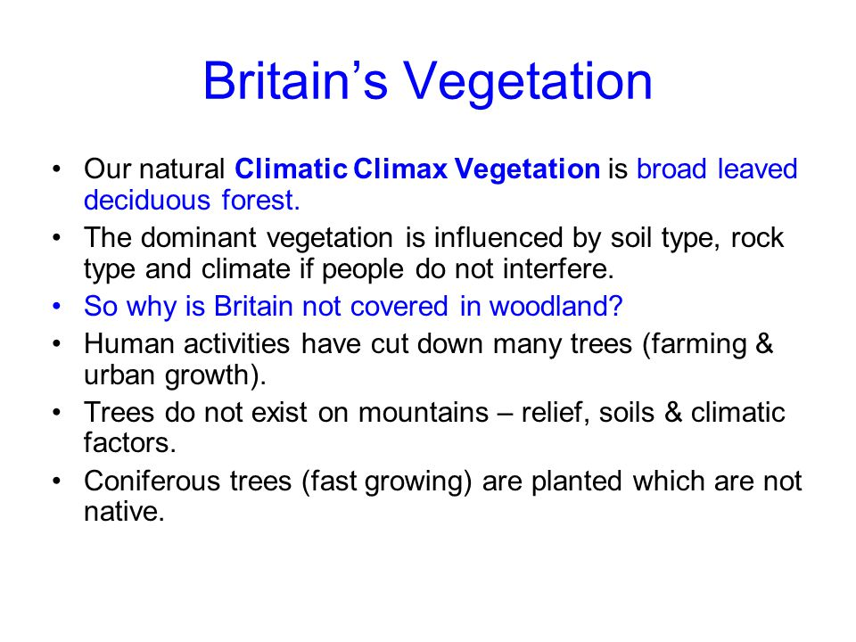 Britain's Vegetation Our natural Climatic Climax Vegetation is broad leaved deciduous forest.