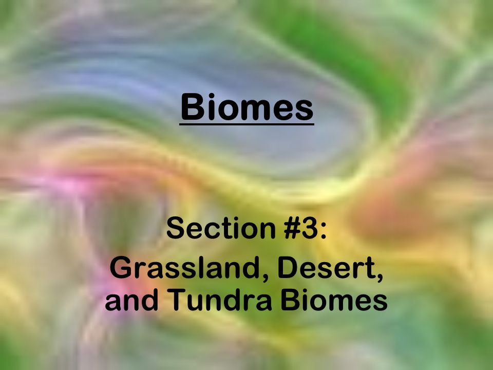 Section #3: Grassland, Desert, and Tundra Biomes