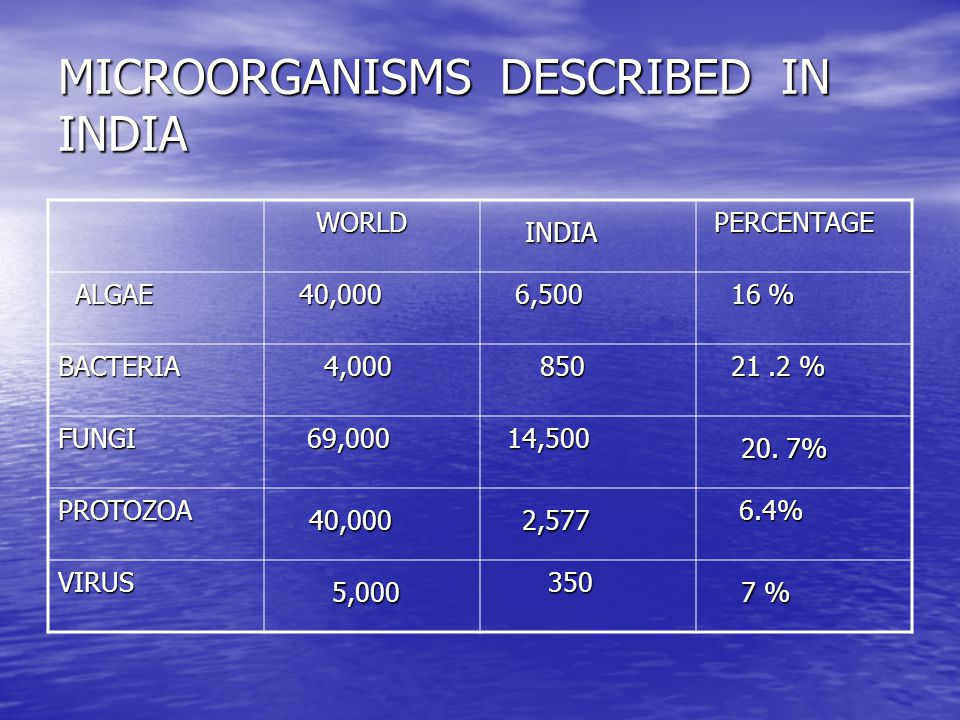MICROORGANISMS DESCRIBED IN INDIA