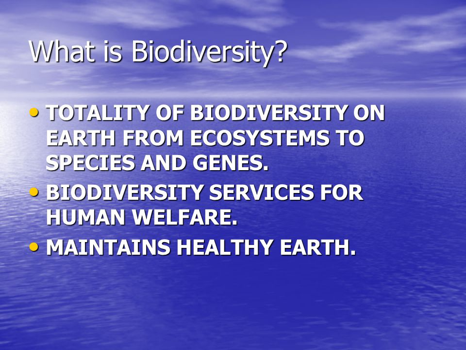 What is Biodiversity TOTALITY OF BIODIVERSITY ON EARTH FROM ECOSYSTEMS TO SPECIES AND GENES. BIODIVERSITY SERVICES FOR HUMAN WELFARE.