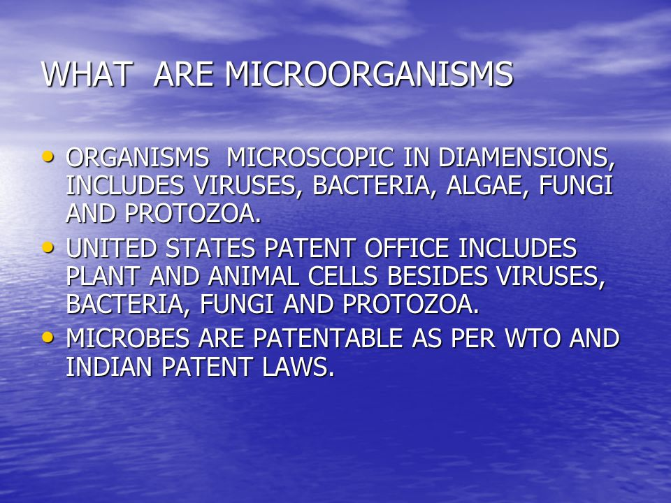 WHAT ARE MICROORGANISMS