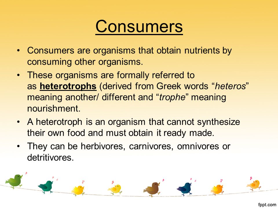 Consumers Consumers are organisms that obtain nutrients by consuming other organisms.