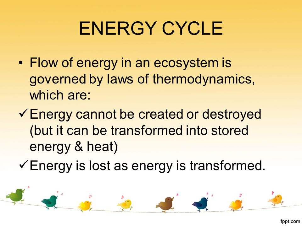 ENERGY CYCLE Flow of energy in an ecosystem is governed by laws of thermodynamics, which are: