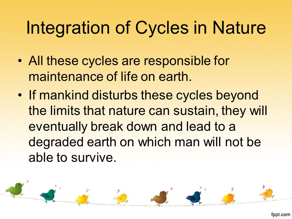 Integration of Cycles in Nature