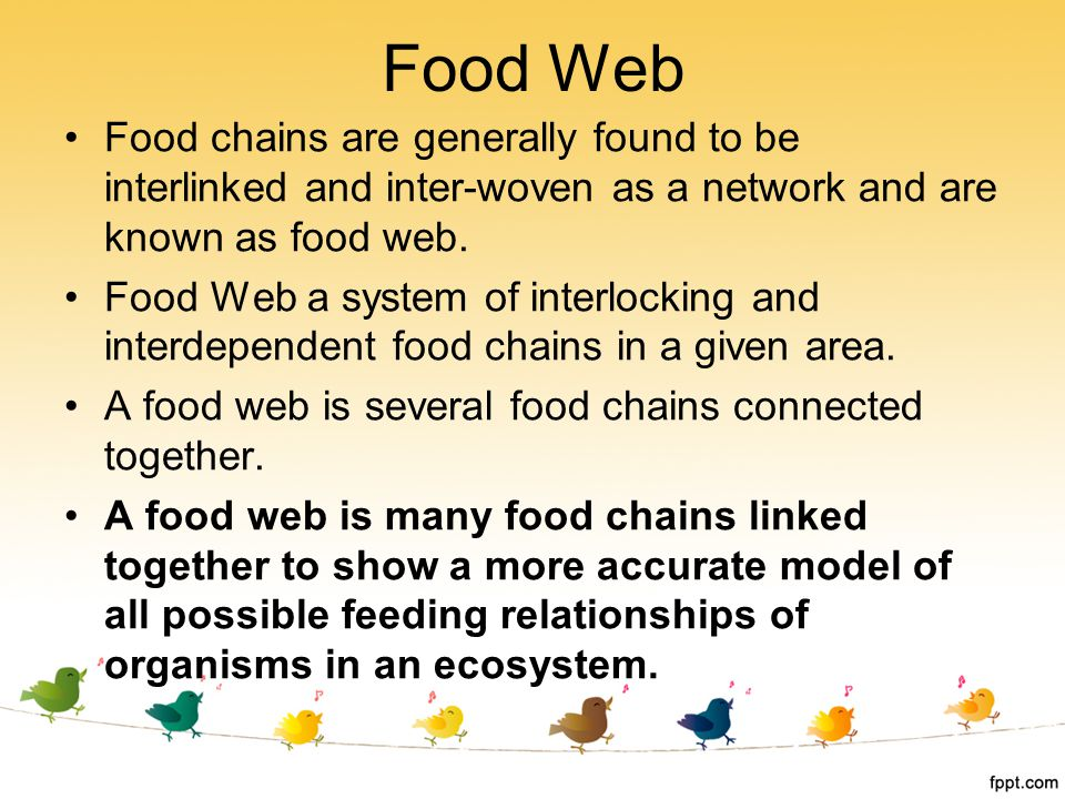 Food Web Food chains are generally found to be interlinked and inter-woven as a network and are known as food web.