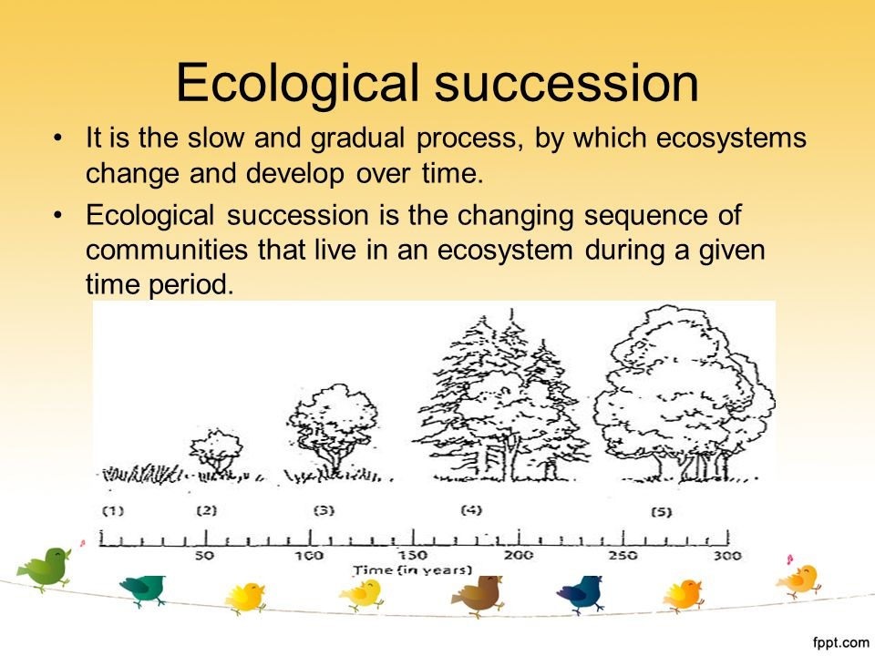 ecological succession a result of changes in the ecosystems Chapter 2: biodiversity, ecosystems and ecosystem services 3  alterations in biodiversity can result in very noticeable changes in  biodiversity, ecosystems and.