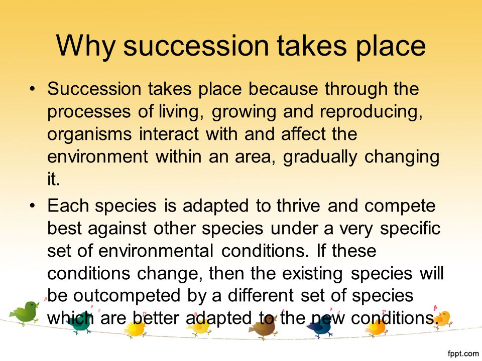 Why succession takes place