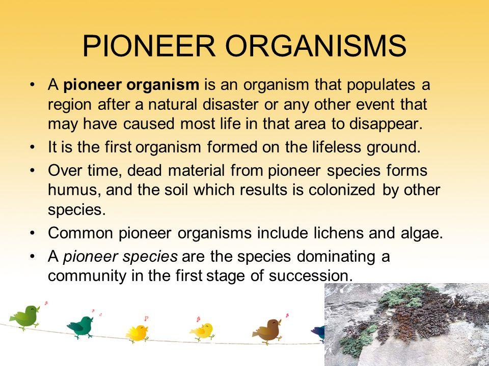 PIONEER ORGANISMS