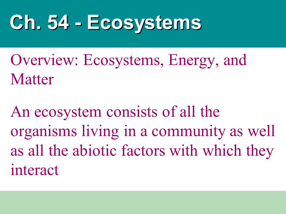 Ch. 54 - Ecosystems Overview: Ecosystems, Energy, and Matter