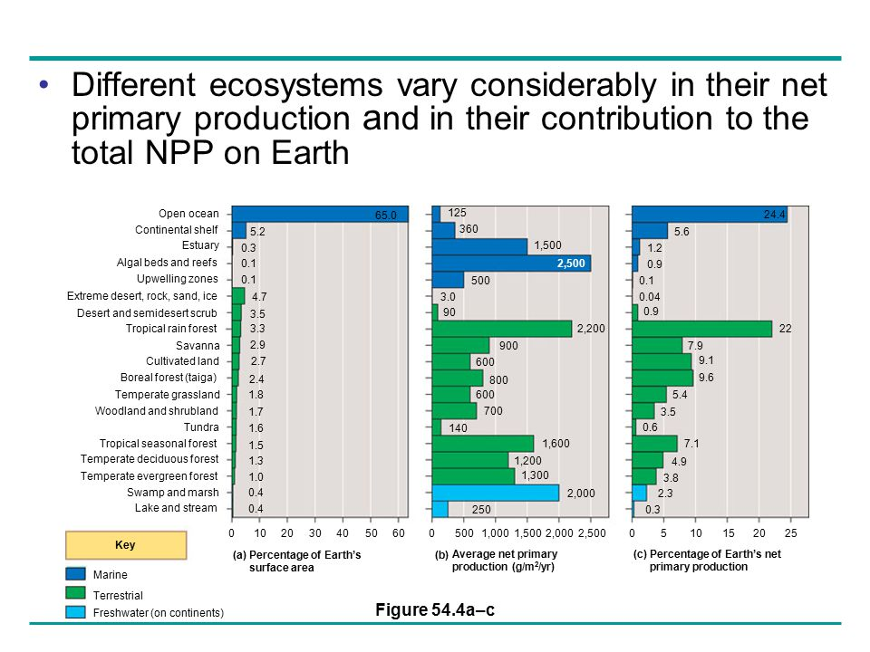 Different ecosystems vary considerably in their net primary production and in their contribution to the total NPP on Earth