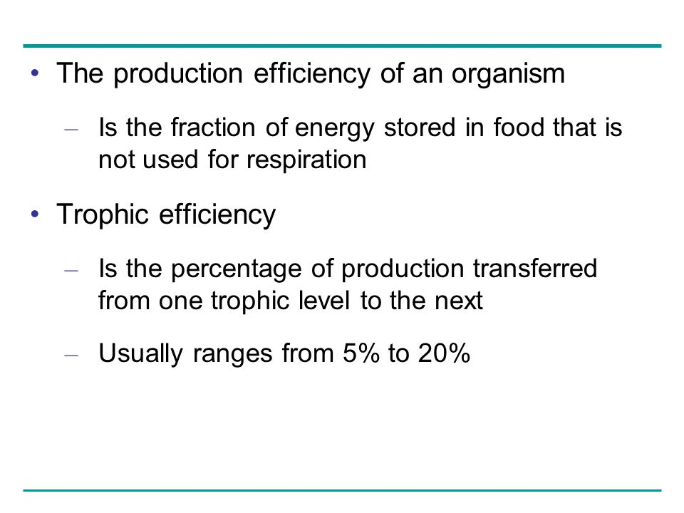 The production efficiency of an organism