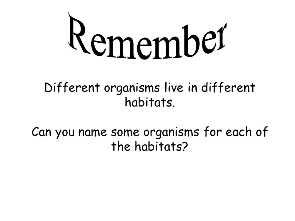 Remember Different organisms live in different habitats.