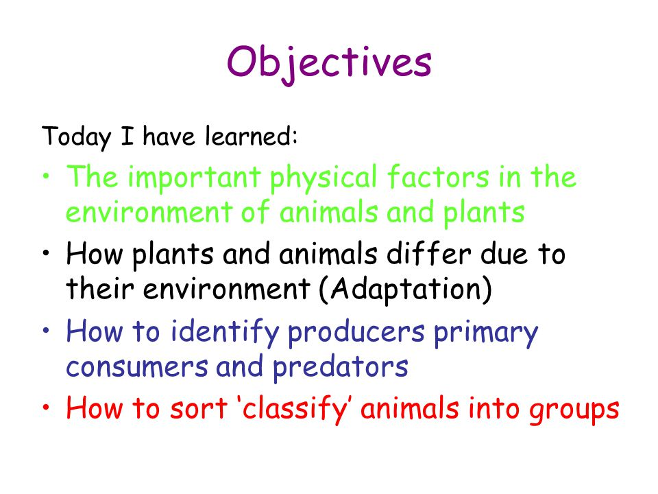 Objectives Today I have learned: The important physical factors in the environment of animals and plants.