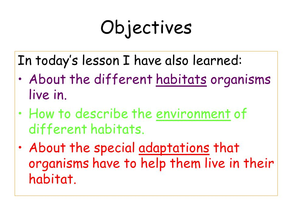 Objectives In today's lesson I have also learned:
