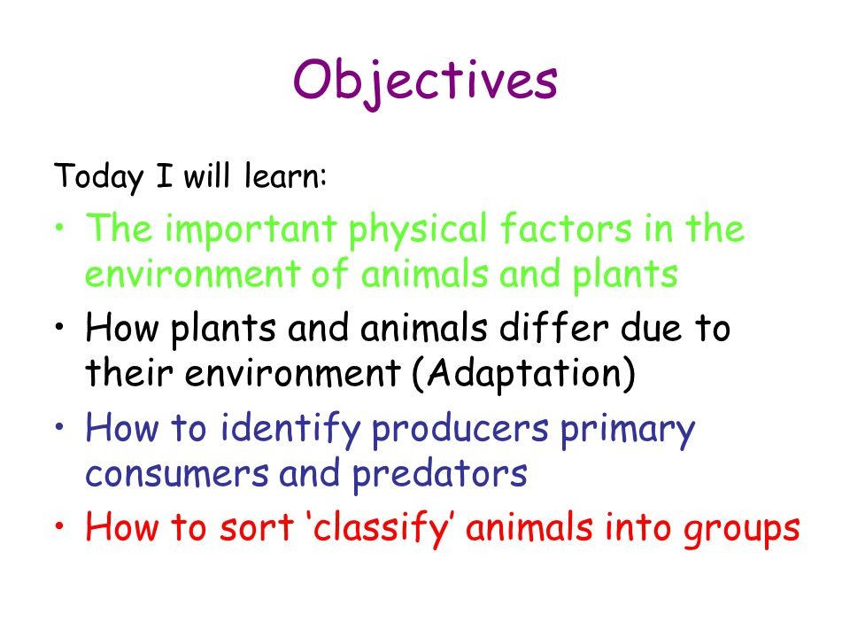Objectives Today I will learn: The important physical factors in the environment of animals and plants.