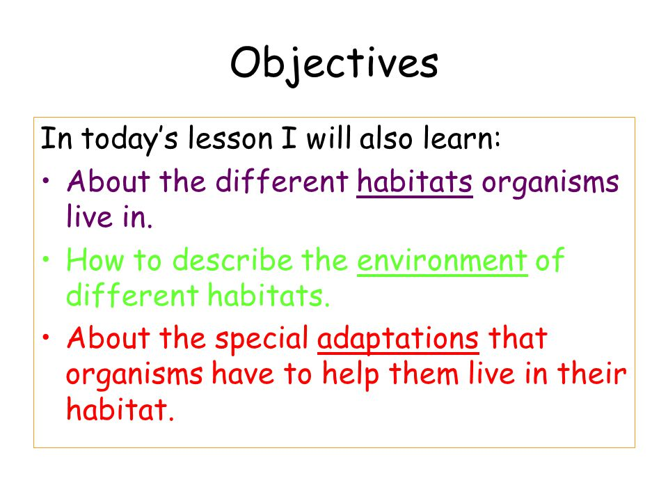 Objectives In today's lesson I will also learn: