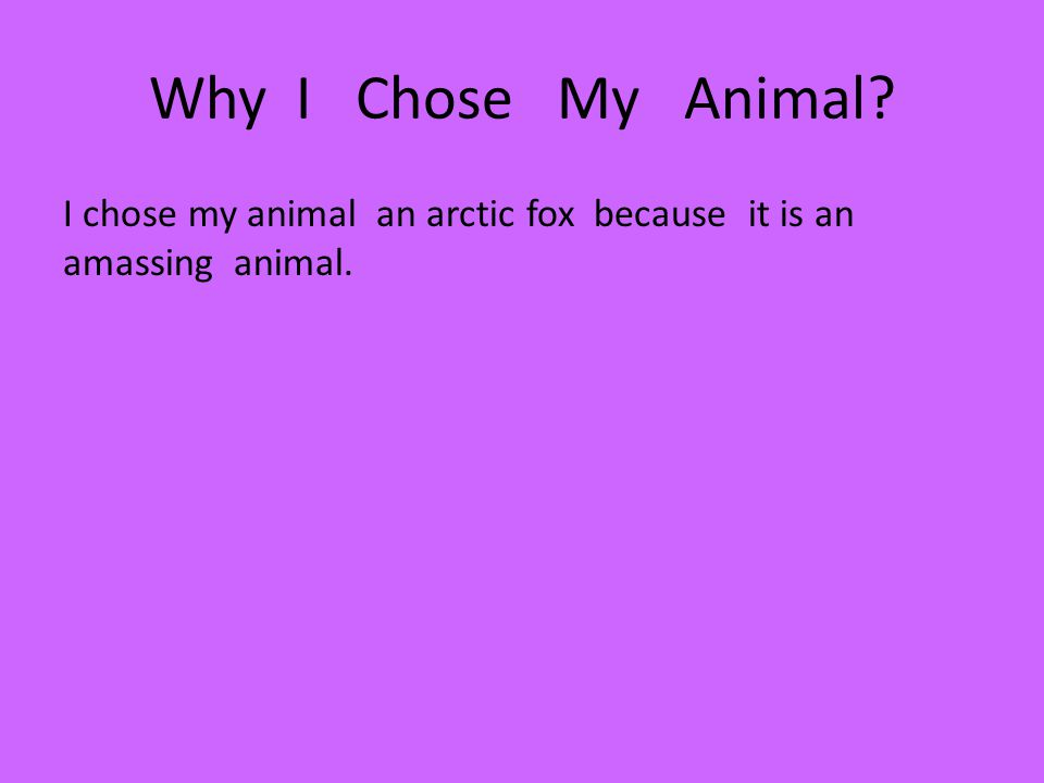 Why I Chose My Animal I chose my animal an arctic fox because it is an amassing animal.