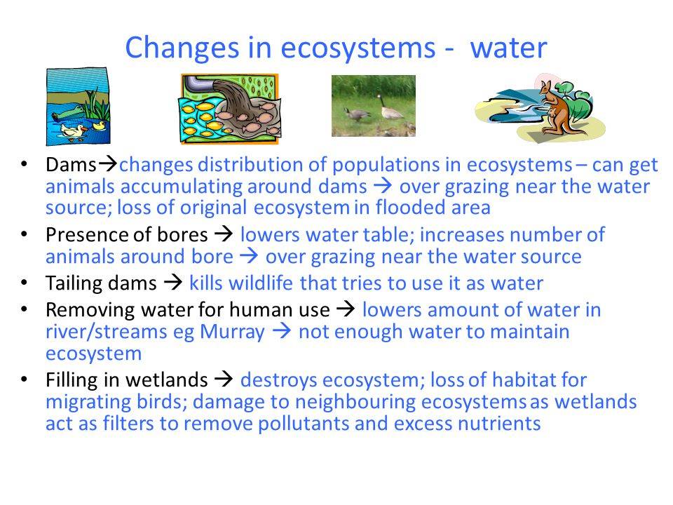 Changes in ecosystems - water
