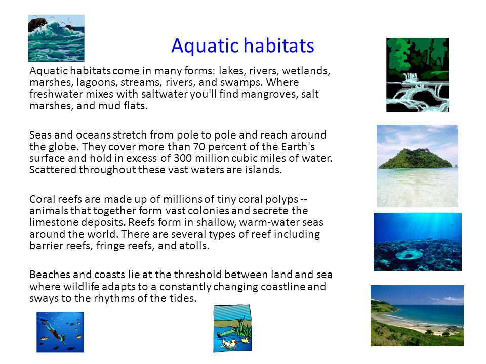 Aquatic habitats