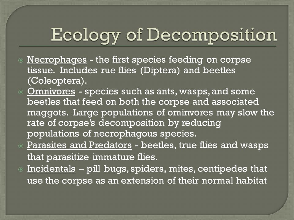 Ecology of Decomposition