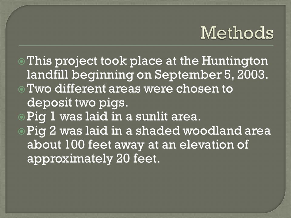 Methods This project took place at the Huntington landfill beginning on September 5, 2003. Two different areas were chosen to deposit two pigs.