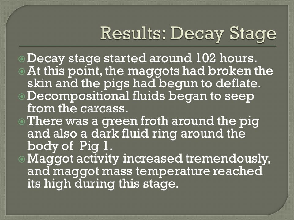 Results: Decay Stage Decay stage started around 102 hours.