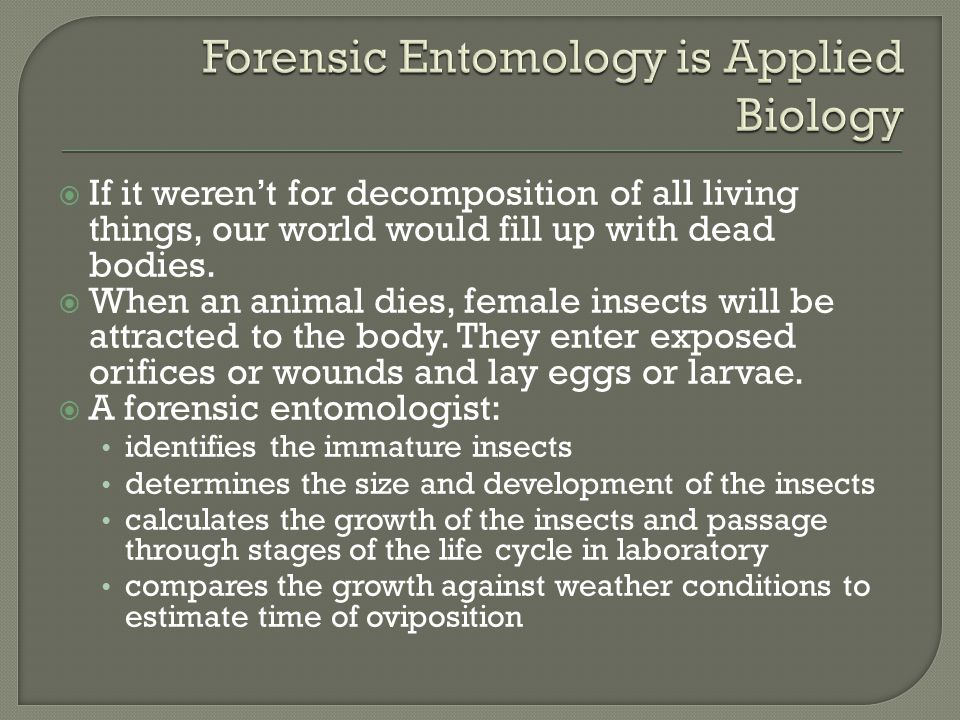 Forensic Entomology is Applied Biology