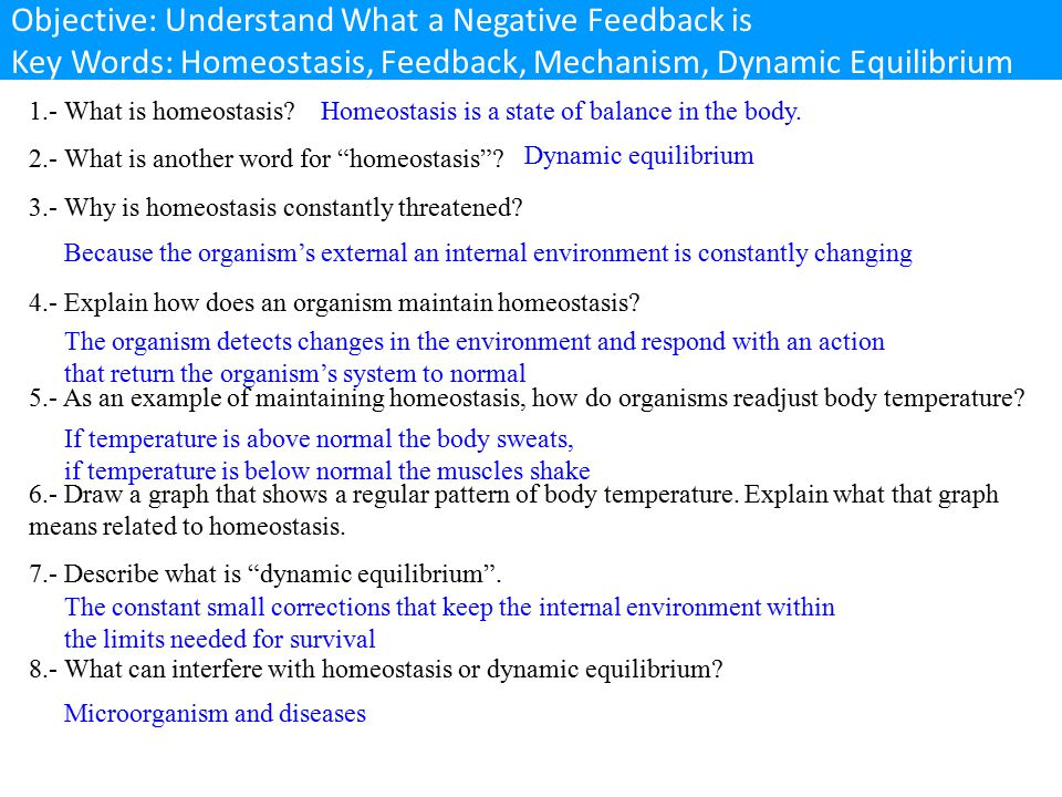 Objective: Understand What a Negative Feedback is Key Words: Homeostasis, Feedback, Mechanism, Dynamic Equilibrium