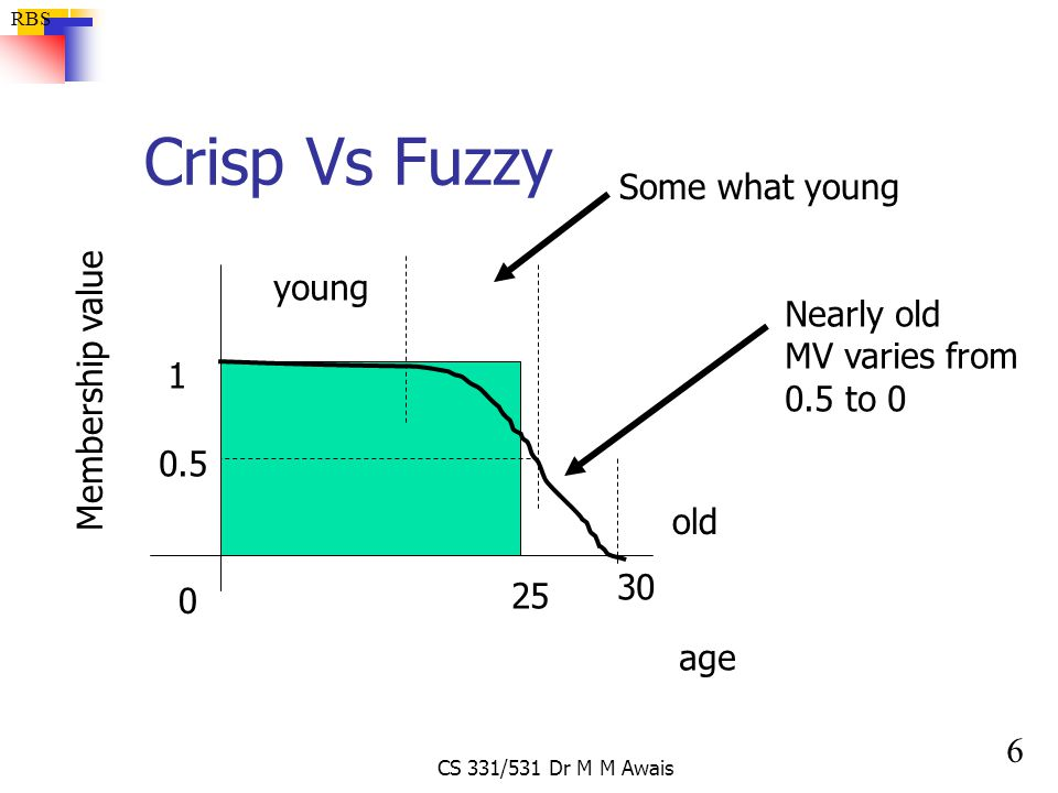 Crisp Vs Fuzzy Some what young young Nearly old Membership value