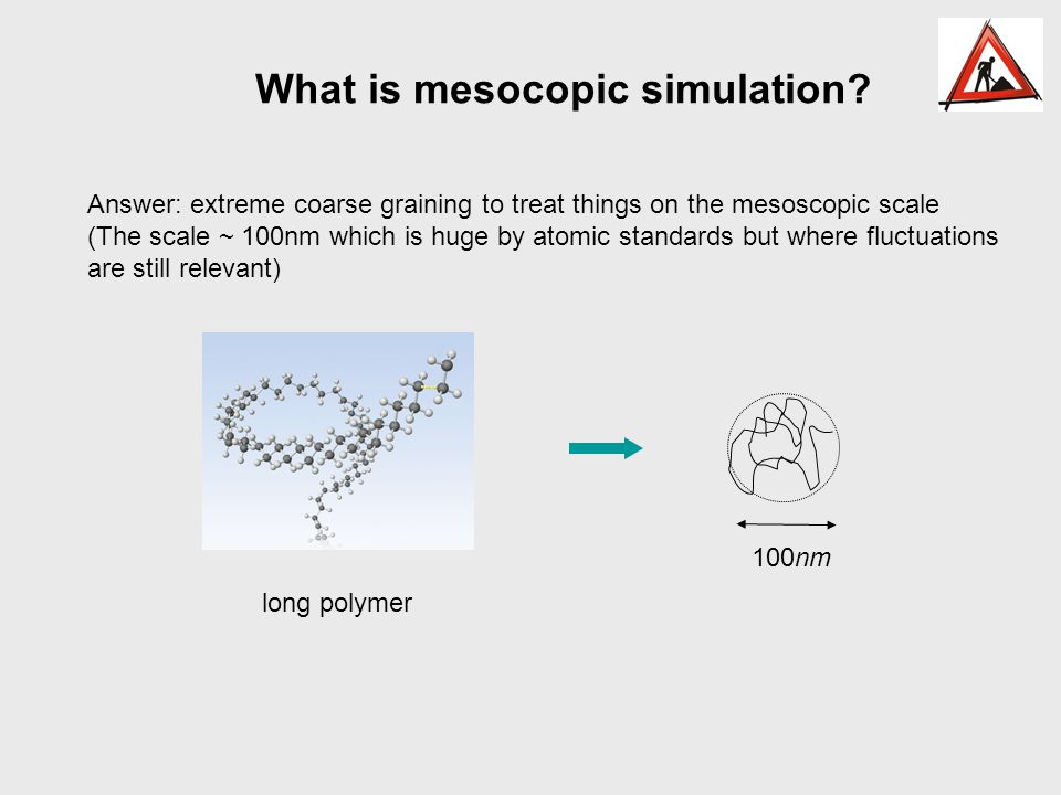 What is mesocopic simulation