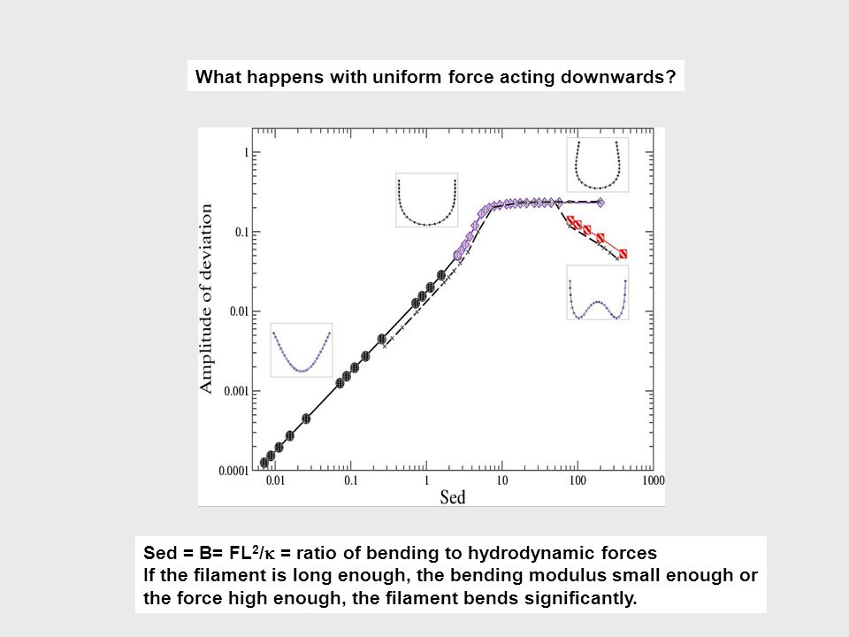 What happens with uniform force acting downwards