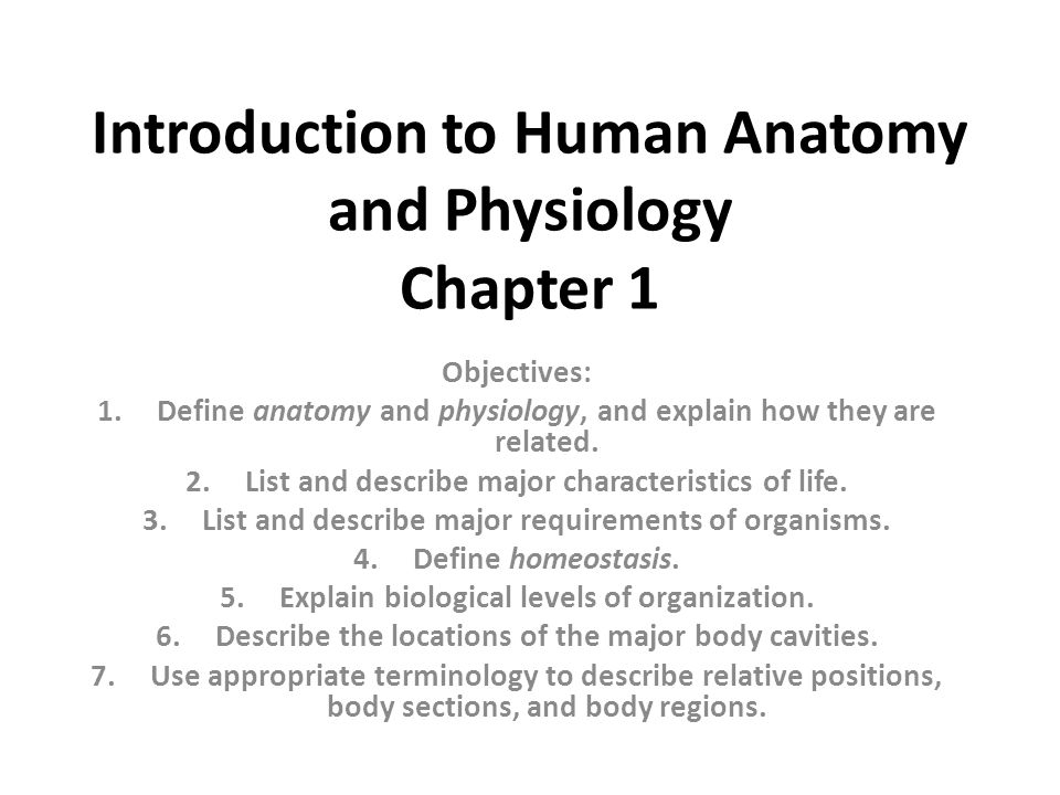 Introduction To Human Anatomy And Physiology Chapter 1 Ppt Video