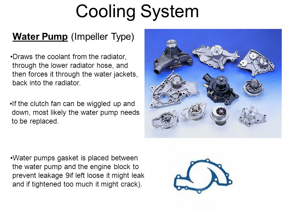 Cooling System Water Pump (Impeller Type)