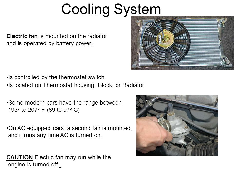 Cooling System Electric fan is mounted on the radiator