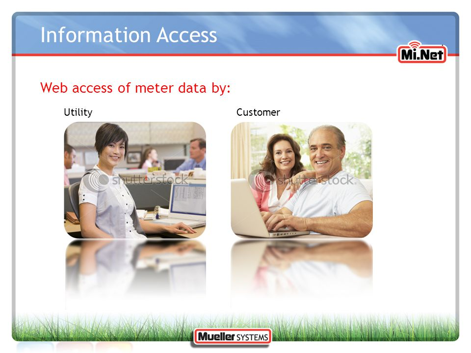 Information Access Web access of meter data by: Utility Customer