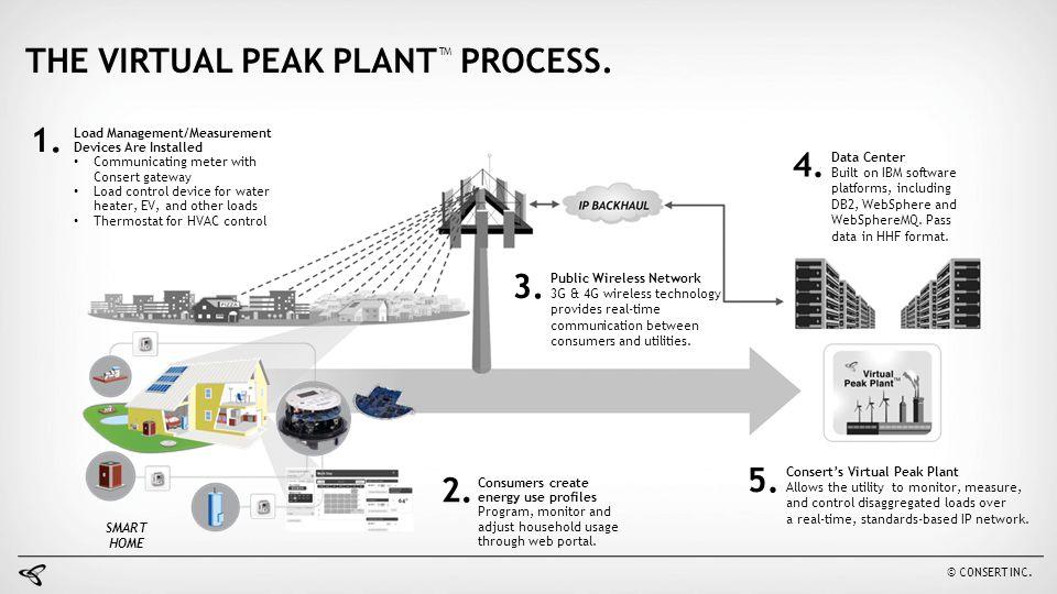 THE VIRTUAL PEAK PLANT™ PROCESS.